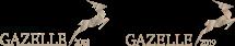 Vi fik Børsen Gazelle både i 2018 og 2019